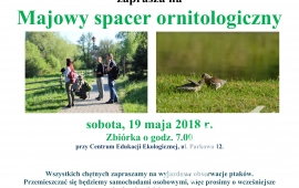 Majowy spacer ornitologiczny